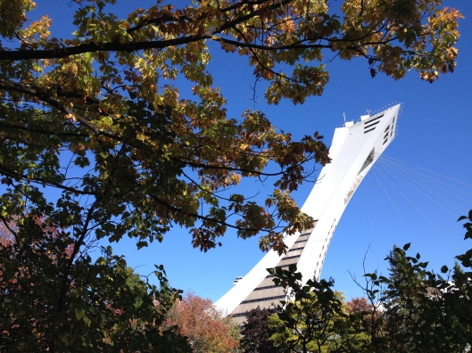 The Olympic Park Tower