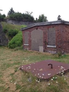 Fort Ives