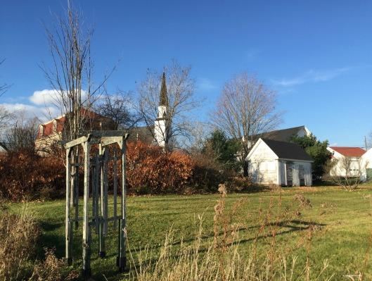 Elizabeth Bishop House, back yard