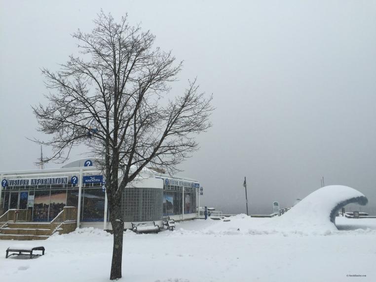 Nova Scotia in the snow (and fog)
