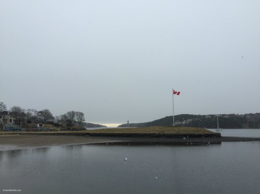 Northwest Arm in the snow