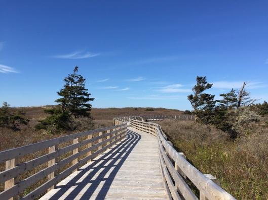 The boardwalk at Prince Edward Island National Park, Greenwich