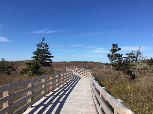 The boardwalk at Prince Edward Island National Park, Greenwich