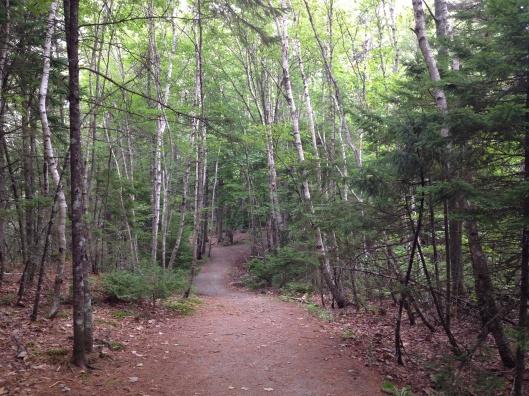 Belcher's Marsh Park, Halifax, NS