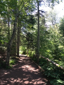 Balsam Hollow Trail, Green Gables, Cavendish, PEI