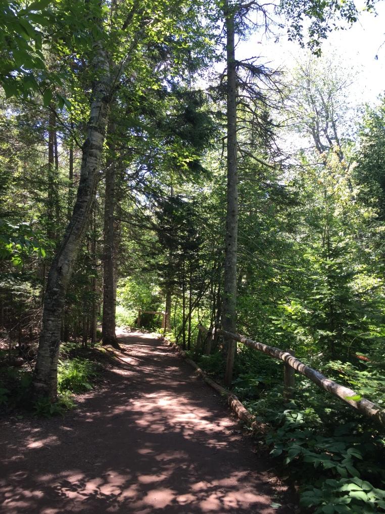 Balsam Hollow Trail, Green Gables, Cavendish, PEI