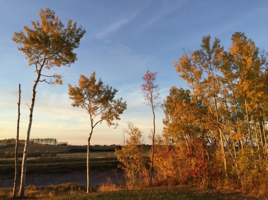 Autumn in the Annapolis Valley, Nova Scotia