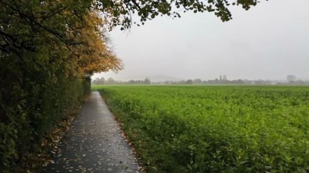 Path in Bonn