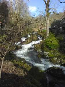 Falls on Rydal beck