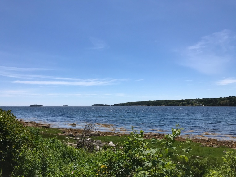 The view from Graves Island