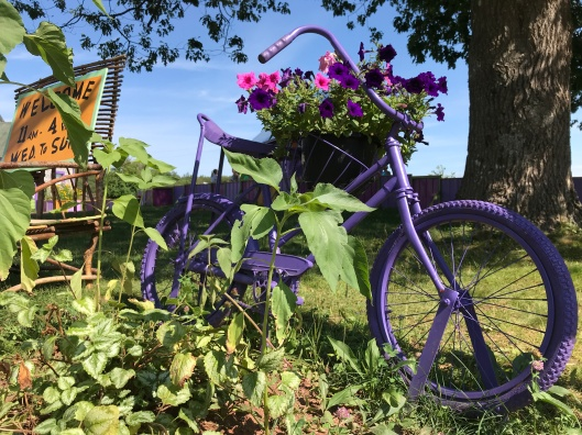 Purple bicycle at Mabel Murple's Book Shoppe & Dreamery